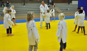 Judoclinic 151117